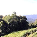 Foto de Alpine Inn