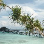Foto de Lankayan Island Dive Resort