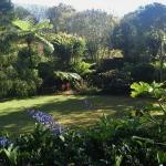 Uitzicht vanaf terras op de tuin
