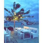 Foto di BlueFish Paros