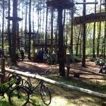 Kletterwald am Wildpark Schorfheide