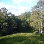 Foto de Whispering Valley Cottage Retreat