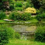Marsh Villa Gardens