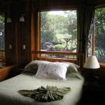 Foto de Hidden Canopy Treehou