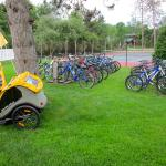 Some of the many bikes available for guests at the motel.