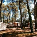 Tente Ecolodge