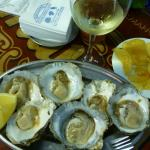 Frische Austern erste Qualität