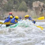 Wilderness Aware Rafting - Day Tours