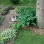 A Wicher Garden Bed & Breakfast Foto
