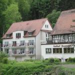 Hotel Gasthof Neumühle Foto