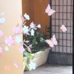 Restaurant decoration pink butterflies, Namu Korean and Western Grill  |  1303 Mayor Magrath Dri