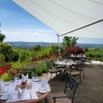 Terrasse Panorama Restaurant