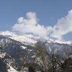 Mountan View