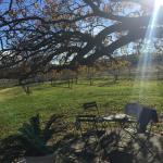 Foto de Whipstock Guest Farm