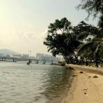 Foto de Jerejak Rainforest Resort