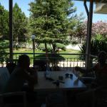 Club Hotel Pineta Foto