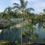 Landscape - Hilton Waikoloa Village Photo