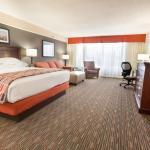 Deluxe Oversized King Guestroom