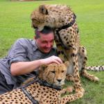 Licked by a cheetah