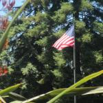 American Flag - Playing Field Area - Central Park, San Mateo, Ca