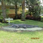 Foto de Caribe Cove Resort Orlando