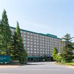 Photo de International Garden Hotel Narita