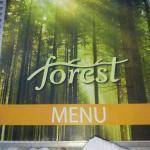 Bilde fra Forest