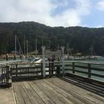 Angel Island Arrivals Across the Street