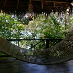 Foto de Viking Natures Resort