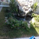 Water fall near the Pool
