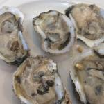 Freshest oysters and great desserts!