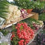 Harrisonburg Farmers Market Foto