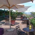 Foto de Hotel Terre di Casole