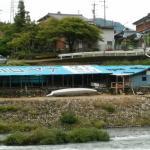Kawaguchi Yana