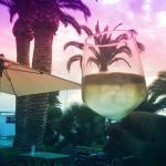 Photo de Palm Café