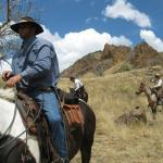 horse drive