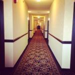 Photo de Comfort Suites Airport North