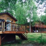 Cabin and home rentals