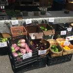 Summerville Farmer's Market