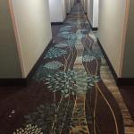 Photo de BEST WESTERN Hospitality Hotel