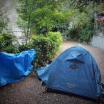 Foto de Camping Pineta