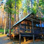 Sugar Pine Cabin near sunset!