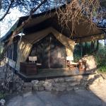 Foto de Manyara Ranch Conservancy