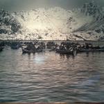 La pêche aux Lofoten il y a déjà longtemps