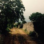 Landscape - Trulli Angela Photo