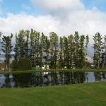 Foto de Lavender Farm Guest House Franschhoek