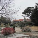 Los Cedros con nieve
