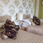 Twin bed availability with lively new bedding