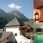 Alpenhotel Plaza room pool
