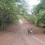 Foto de Hotel Monkey's Island Ometepe